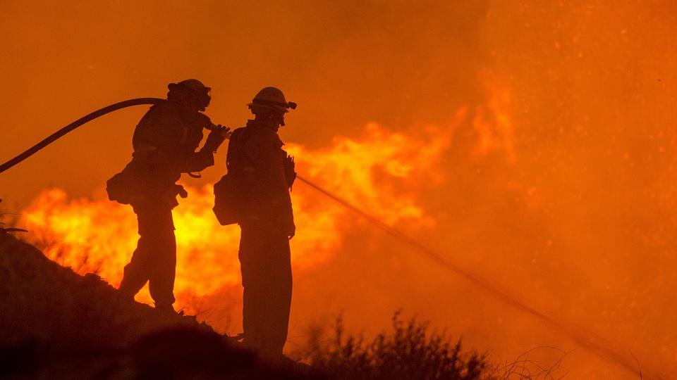 Concurso Bombeiros MT: foto de bombeiros trabalhando em incêndio na mata