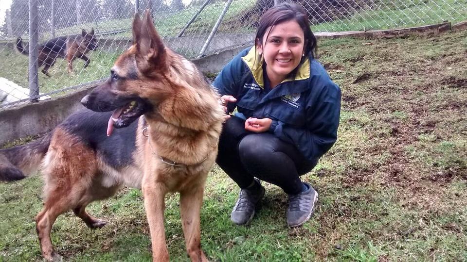 Concurso CRMV RO: mulher ao lado do seu cão labrador