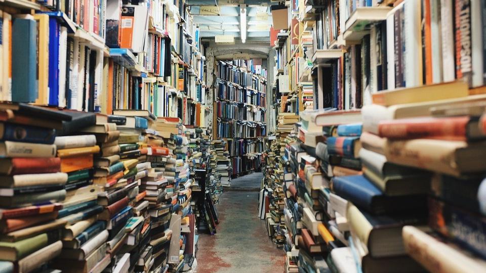 Concurso Fundação Pedro Calmon BA poderá ser realizado em 2021, biblioteca