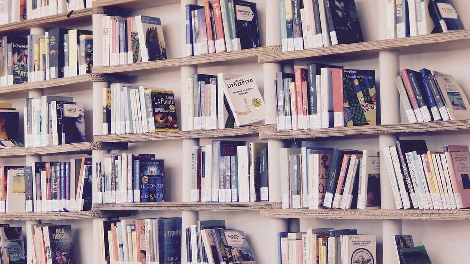 Concurso Secult BA: a foto mostra estantes cheias de livros