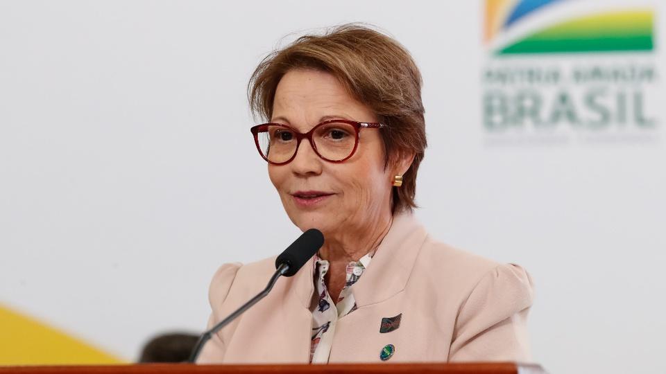 Governo permite novos concursos mesmo com corte de gastos: ministra Tereza Cristina em pronunciamento
