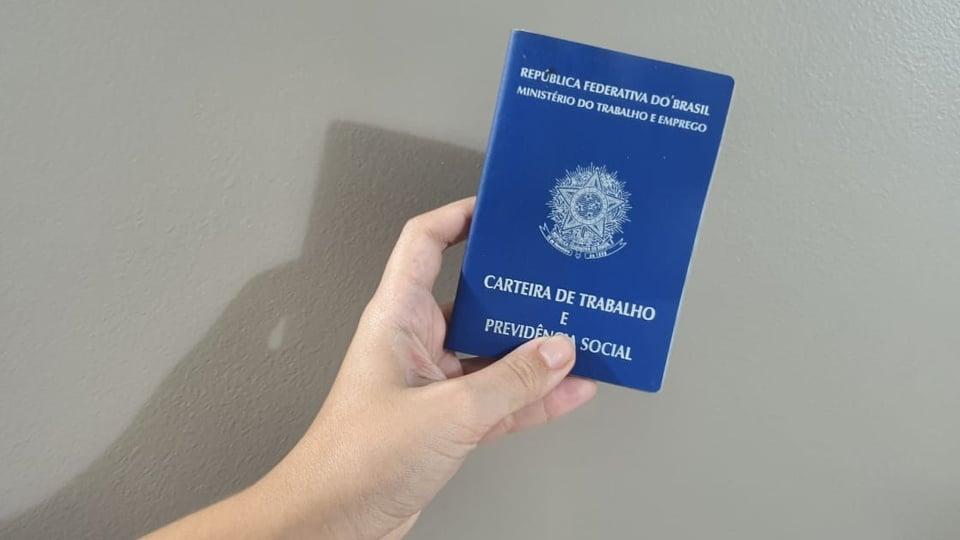 desemprego no brasil: a imagem mostra mão segurando a carteira de trabalho