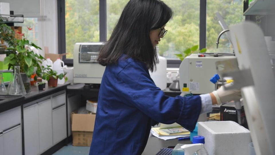 Processo seletivo CRQ 7: foto mostra uma profissional da química trabalhando em um laboratório com microscópio