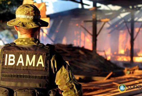 Processo seletivo: profissional do ibama, de costas, com vestimentas reforçadas de segurança. Ao fundo, é possível ver um incêndio - Foto: Ibama/Divulgação