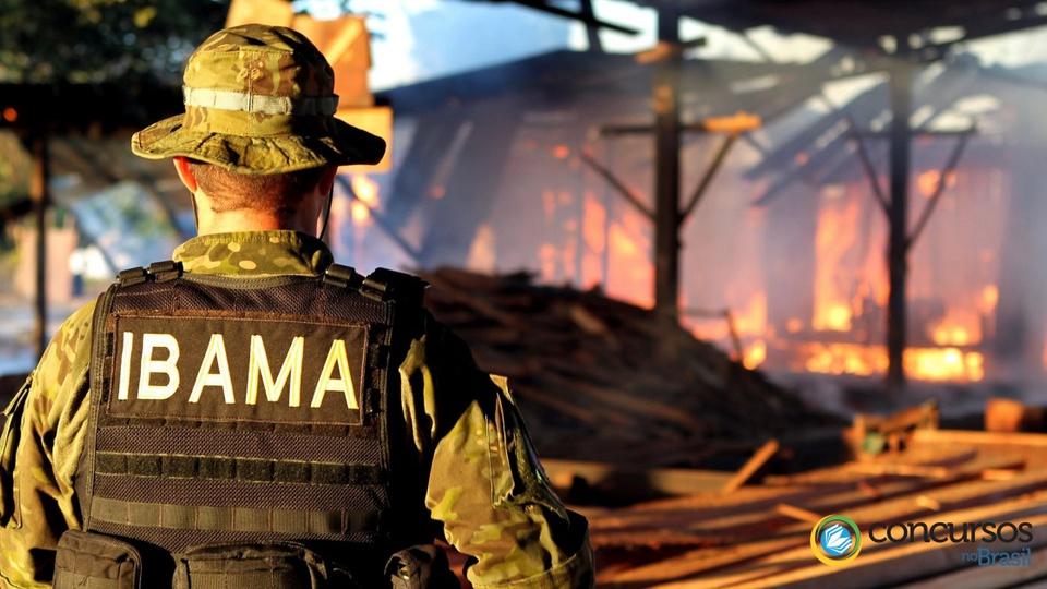 Processo seletivo: profissional do ibama, de costas, com vestimentas reforçadas de segurança. Ao fundo, é possível ver um incêndio