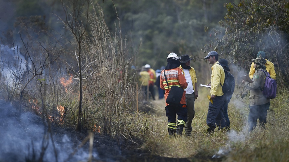 processo seletivo ibram - df: a foto mostra o treinamento para combate de incêndios florestais