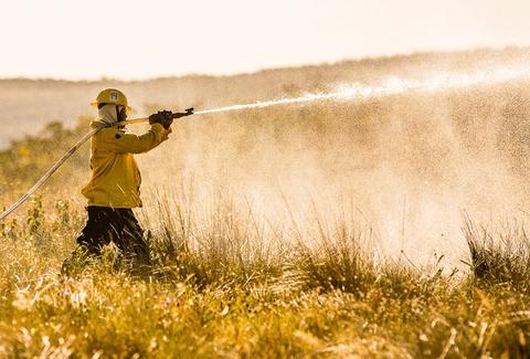 Processo seletivo ICMBio DF: profissional equipado, com mangueira nas mãos, auxiliando no controle de chamas em floresta - Foto: Divulgação ICMBio