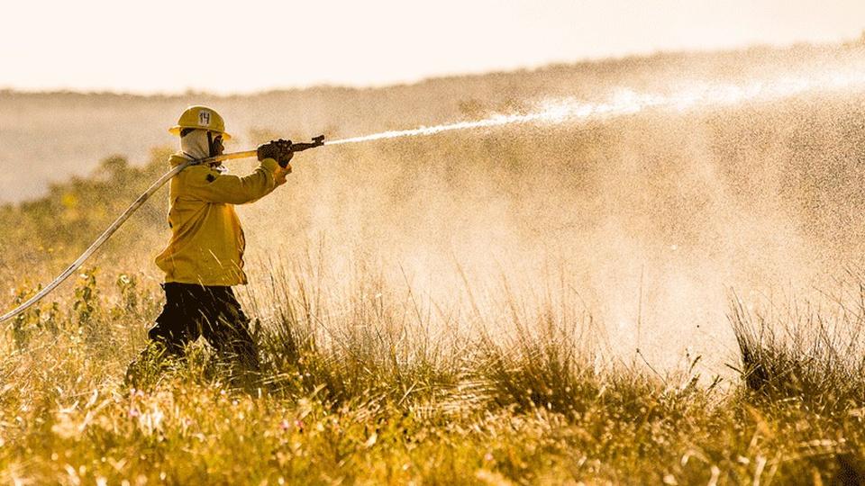 Processo seletivo ICMBio DF: profissional equipado, com mangueira nas mãos, auxiliando no controle de chamas em floresta