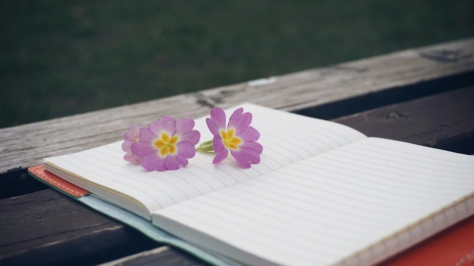 Processo seletivo Prefeitura de Bandeirantes - PR: a foto mostra caderno e flor sobre uma mesa