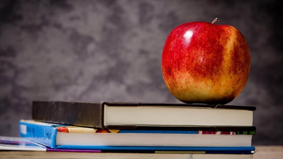 Prefeitura de Santa Cecília: imagem de uma maçã em cima de livros